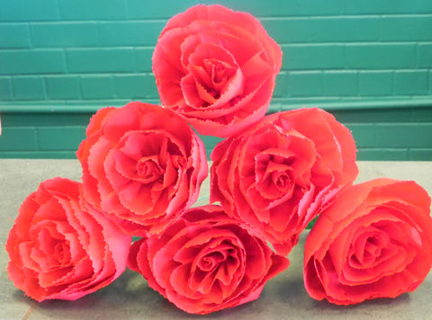 "Free shipping Crepe Paper Flowers Set of 6  Red ""Roses ""  By Julia"