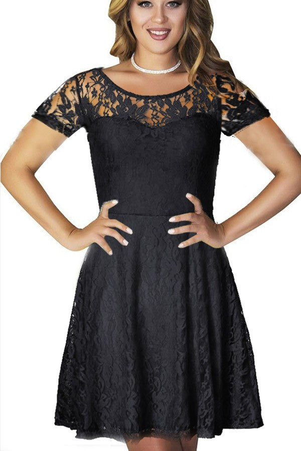 Mesh Lace Overlay Round Neck Short Sleeve A Line Dress