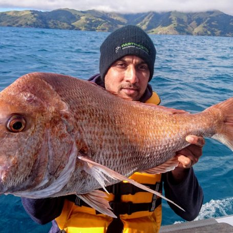 Big winter snapper and trevally
