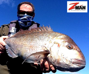 How to catch Snapper in the Shallows