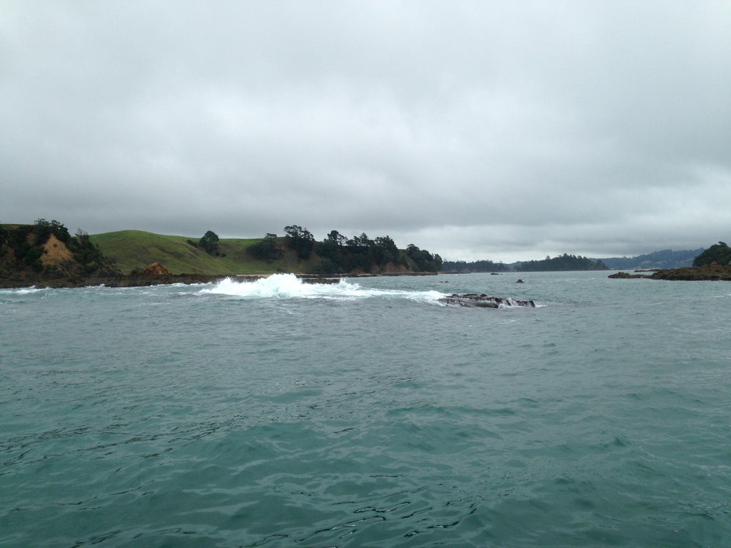 Wash Fishing At The Back Of Ponui Island.