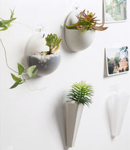 Load image into Gallery viewer, Hydroponic Wall Hanging Flower Pot