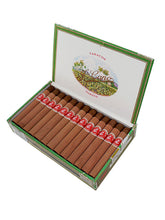 Load image into Gallery viewer, LA FLOR DE CANO - PETIT CORONAS (BOX OF 25)
