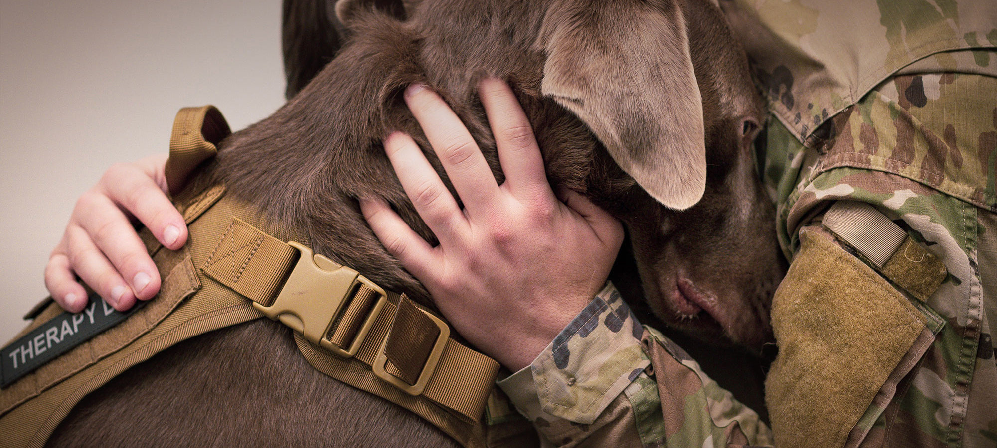 Therapy dog with US soldier