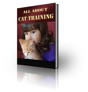 All About Cat Training - Abound Pet Supplies