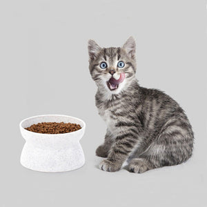Raised Cat Food Bowl - Abound Pet Supplies