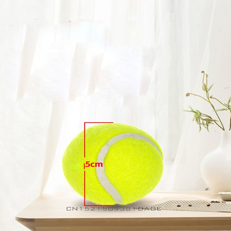 6pcs Refill Balls for Automatic Ball Thrower - Abound Pet Supplies
