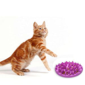 TAILUP Slow Feeder Cat Bowl - Abound Pet Supplies