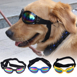 Eye Wear Protection Sunglasses for Dogs over 15 lbs - Abound Pet Supplies