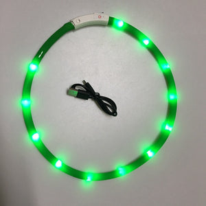 LED USB Rechargeable Dog Collar - Abound Pet Supplies