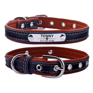 AiruiDog Adjustable Leather Padded Custom Dog Collar with Engraved Nameplate - Abound Pet Supplies