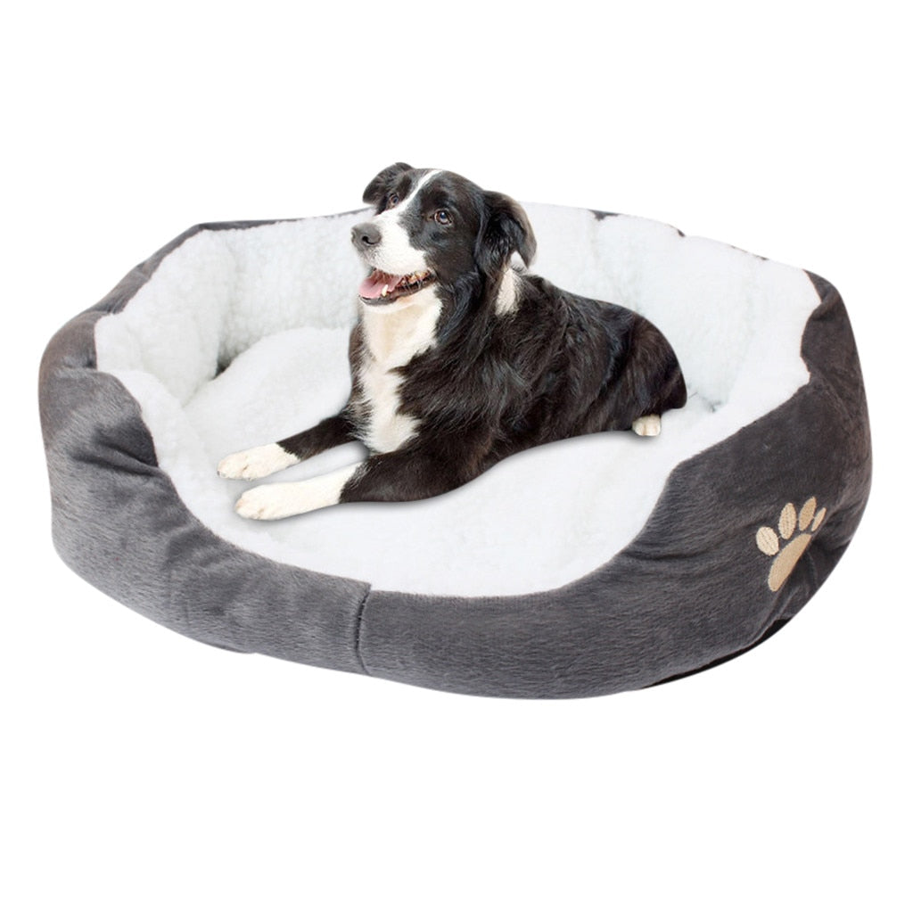 Pet Bed for Small, Medium & Large Dogs - Abound Pet Supplies