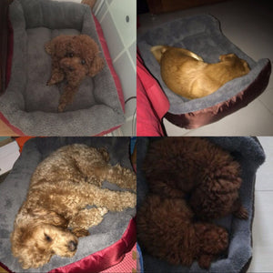 Orthopedic Super Plush Dog Bed - Abound Pet Supplies