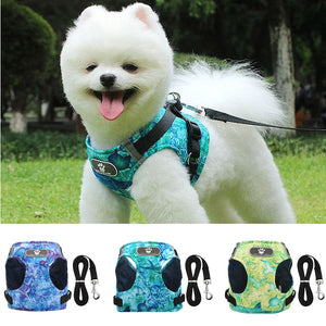 Breathable Small Dog Harness & Leash Set - Abound Pet Supplies