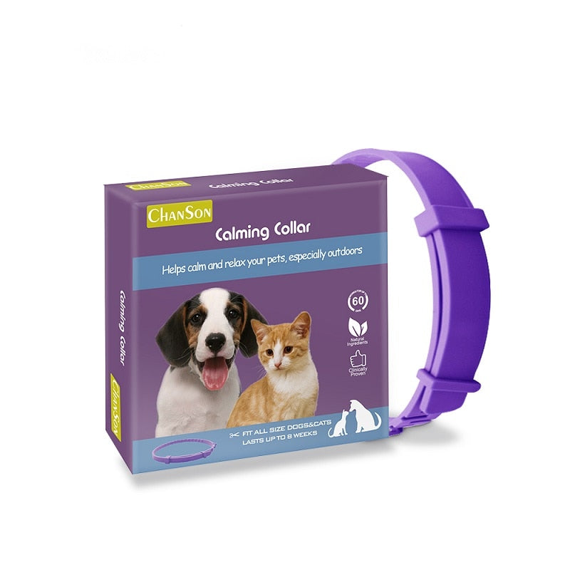 Calming  Collar for Cats & Dogs - Abound Pet Supplies