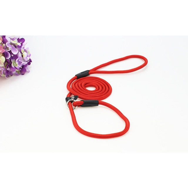 COOLFIELD S/M/L Dog Nylon Leash - Abound Pet Supplies
