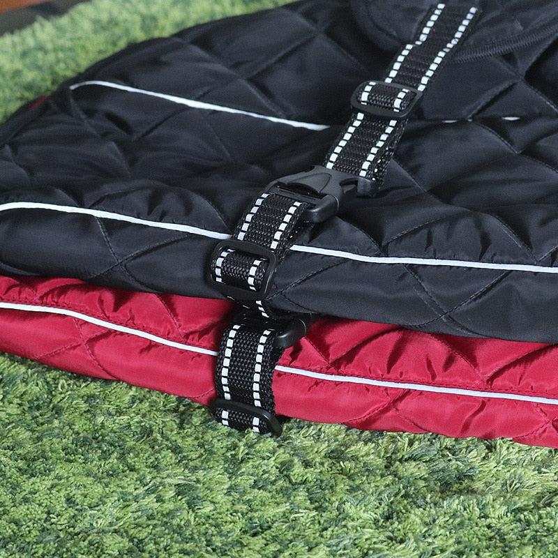 ASMPET Winter Dog Jacket - Abound Pet Supplies