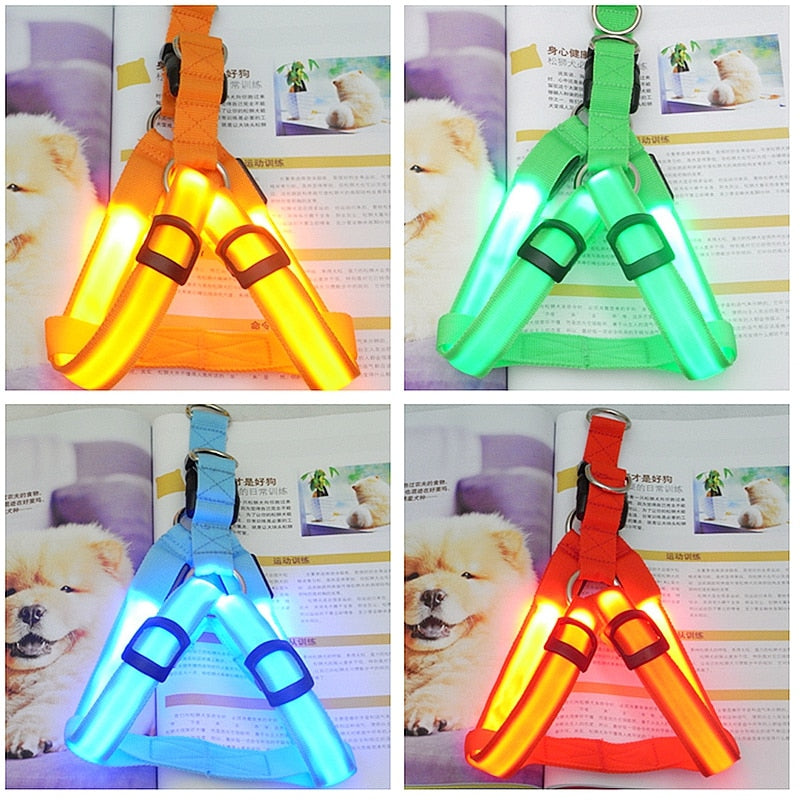 Rechargeable LED Nylon Dog Harness - Abound Pet Supplies
