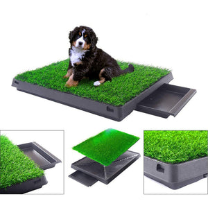 Puppy/Dog Indoor Potty Training Pee Pad Mat - Abound Pet Supplies