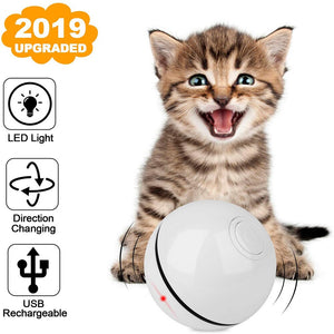 New Upgraded USB Rechargeable Smart Self Rolling Interactive Cat Toy - Abound Pet Supplies