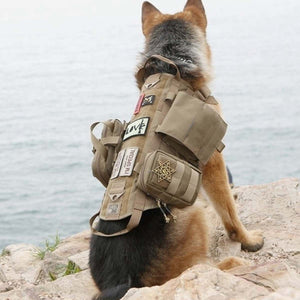 Army Tactical Dog Harness - Abound Pet Supplies