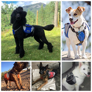 Dog Backpack Harness for Travelling, Hiking & Camping - Abound Pet Supplies
