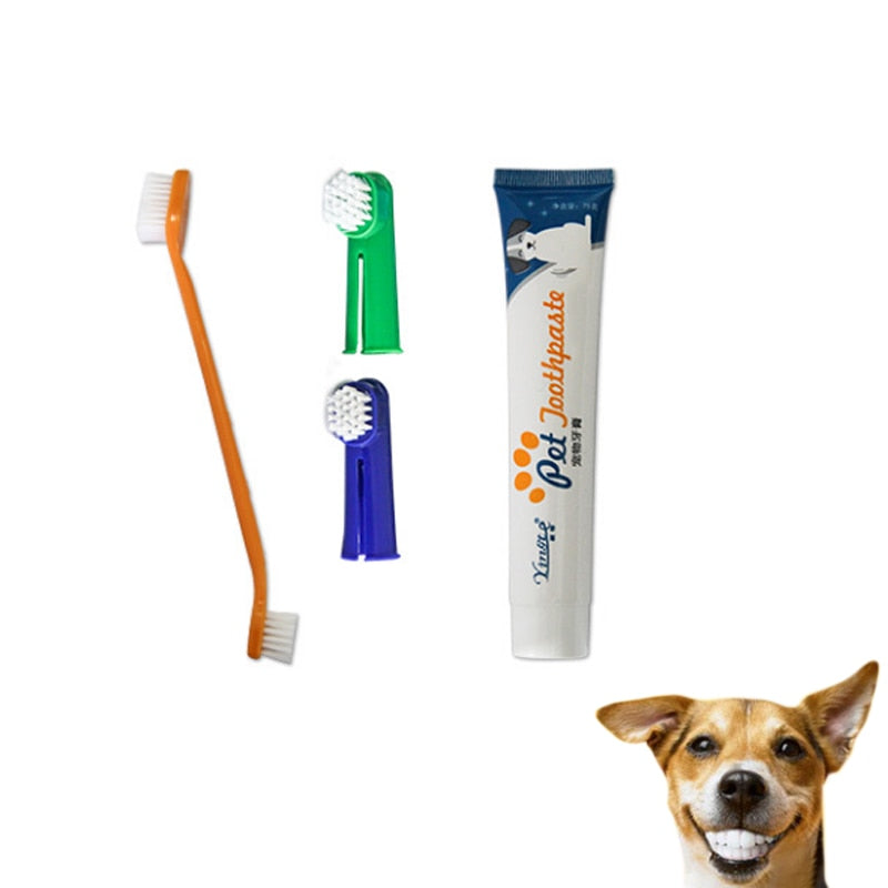 Dental Gum Health Care Kit for Dogs & Cats - Abound Pet Supplies