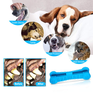 Dog Toothbrush Stick & Chew Toy - Abound Pet Supplies