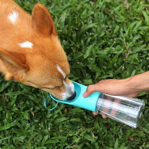 Benepaw Safe Portable Dog Water Bottle - Abound Pet Supplies