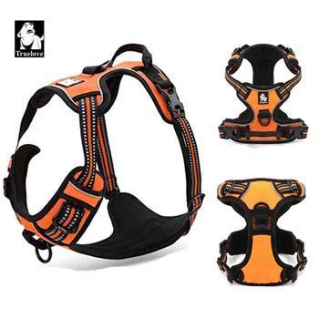 Reflective Nylon Dog Harness with Padded Adjustable Safety Lead - Abound Pet Supplies
