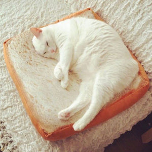 Novelty Cat Toast Bread Bed - Abound Pet Supplies