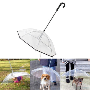 Umbrella Dog Leash for Small Pets - Abound Pet Supplies