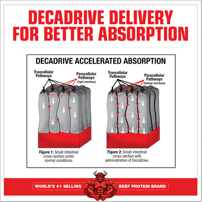 AminoDecanate DECA DRIVE DELIVERY
