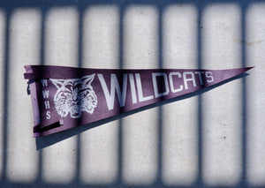 Vintage Mid Century WWHS Wildcats Cheer Flag