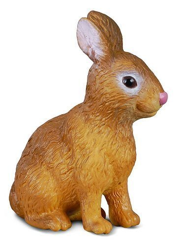 Co88002 RABBIT