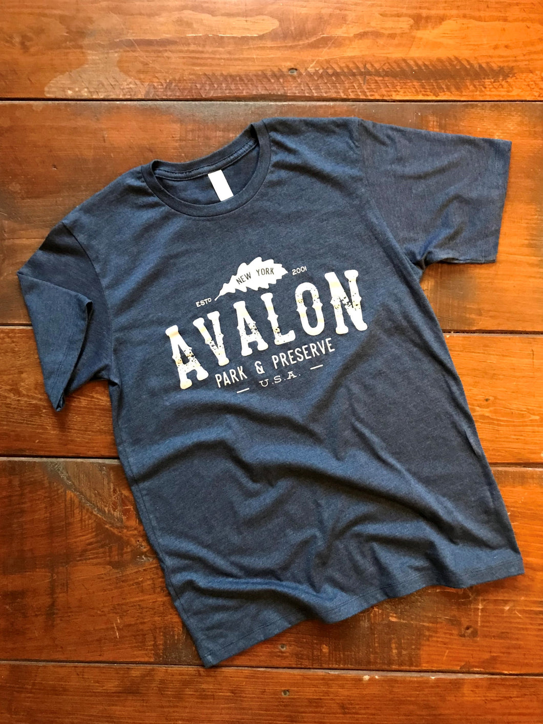 Limited Edition Vintage Avalon T-shirt  (Blue)