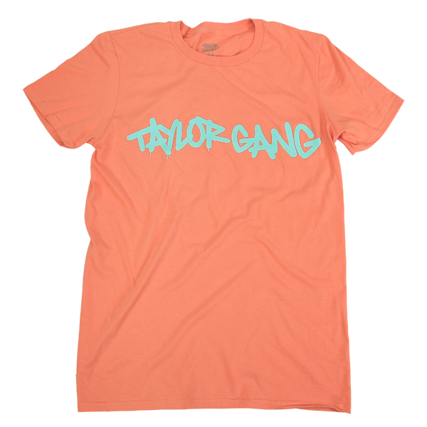 Core Mint on Terracotta T-Shirt