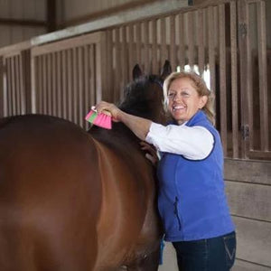 Riding Lesson Video - Grooming