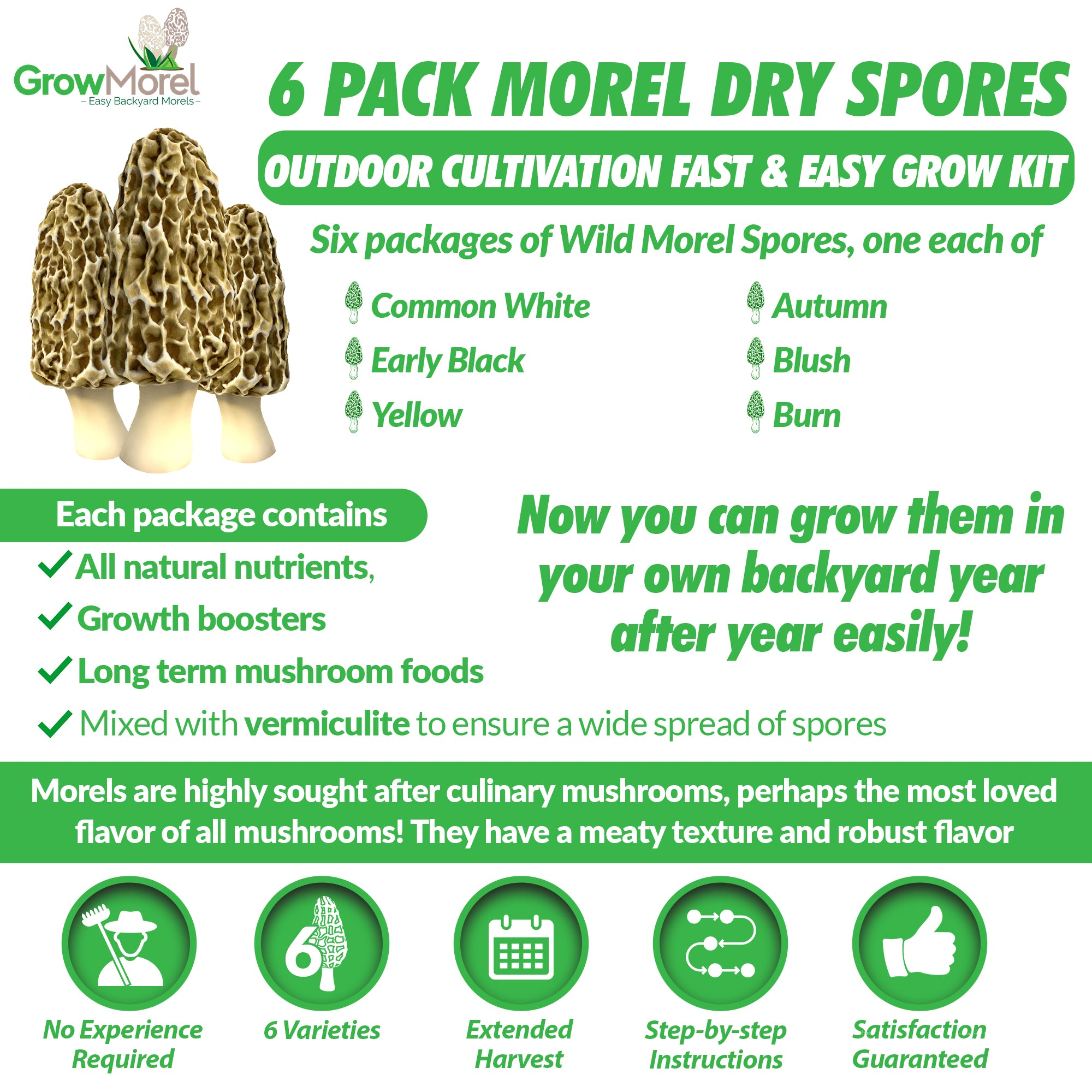 6 Pack Morel Dry Spores Outdoor Cultivation Fast & Easy Grow Kit