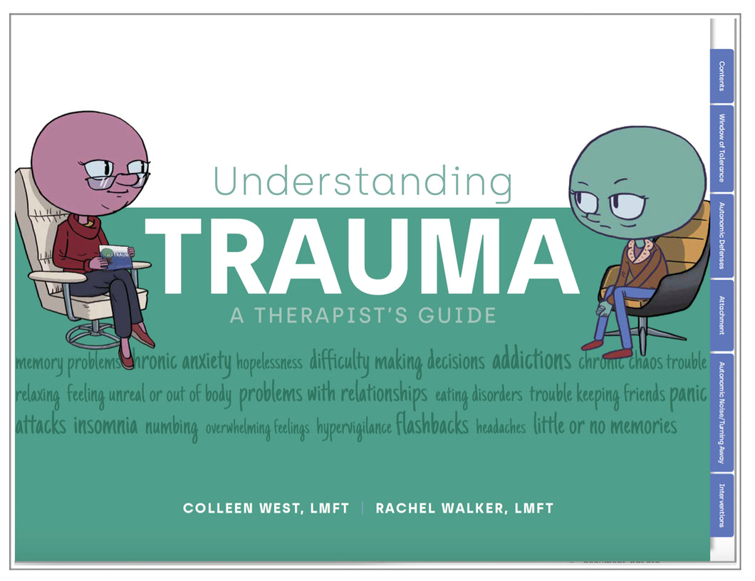 Understanding Trauma - A Therapist's Guide - 1st Edition  (11