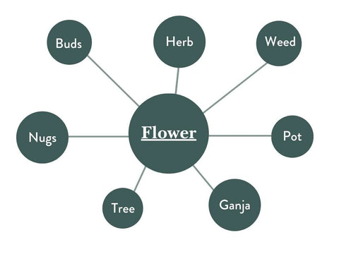 Different Names of hemp flower graphic