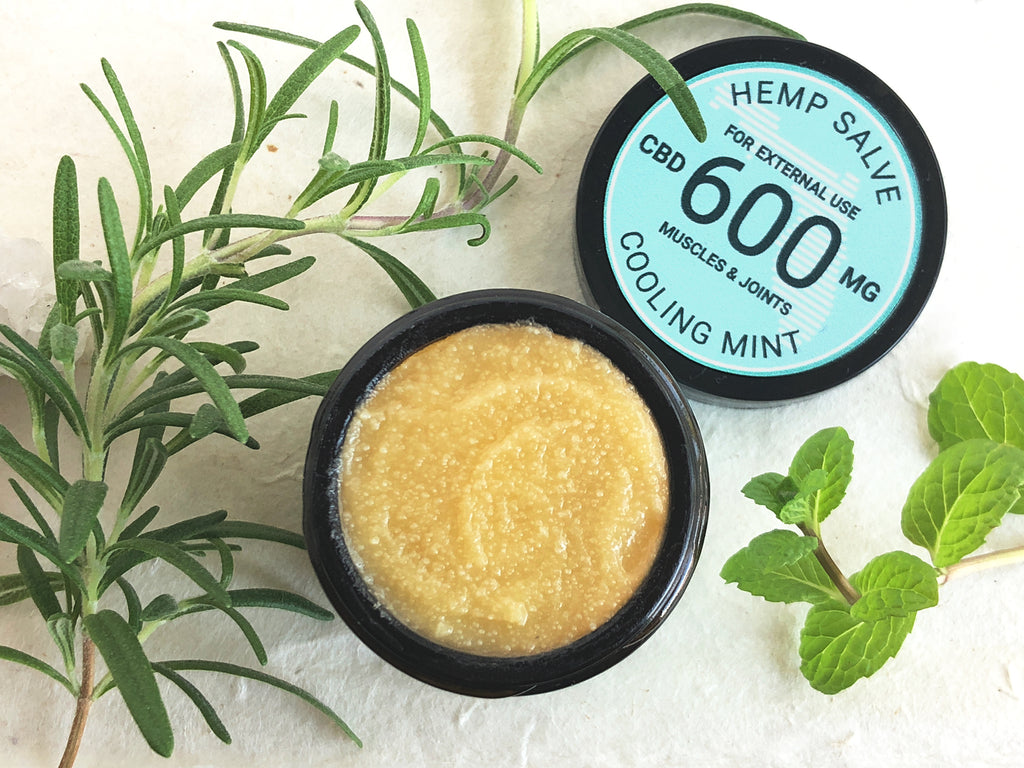 Overhead open 1 oz jar of Treadwell Farms 600 mg high potency Cooling Mint CBD topical salve propped with rosemary sprig and mint leaves representing herbal ingredients