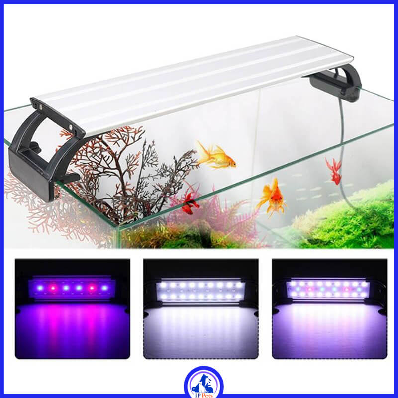 Aquarium lighting lamp