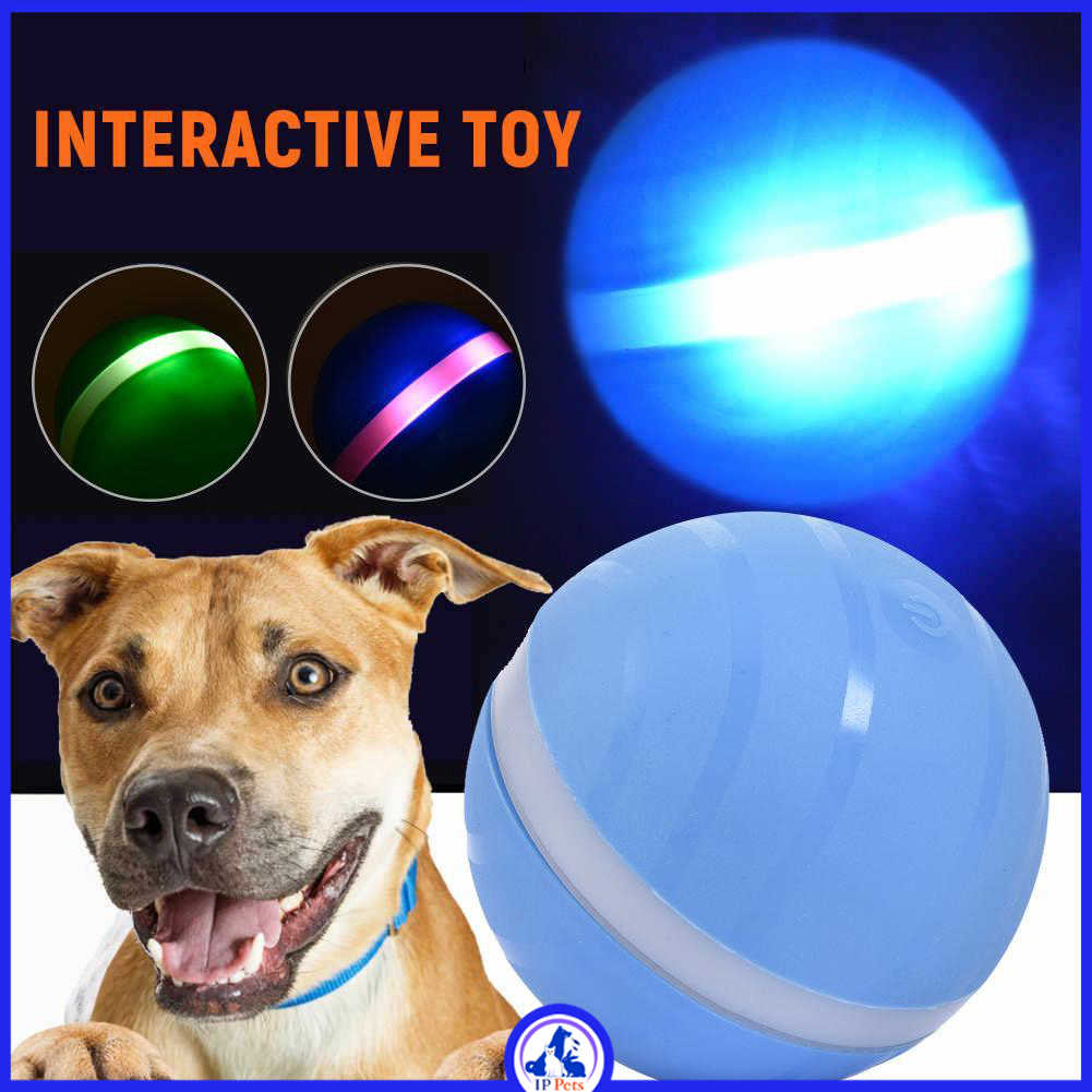 Automatic dog ball jumping magic ball Rechargeable USB electric ippets