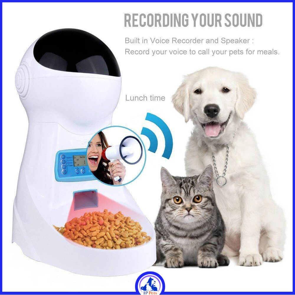 Food bowl with sound recording for a cat dog