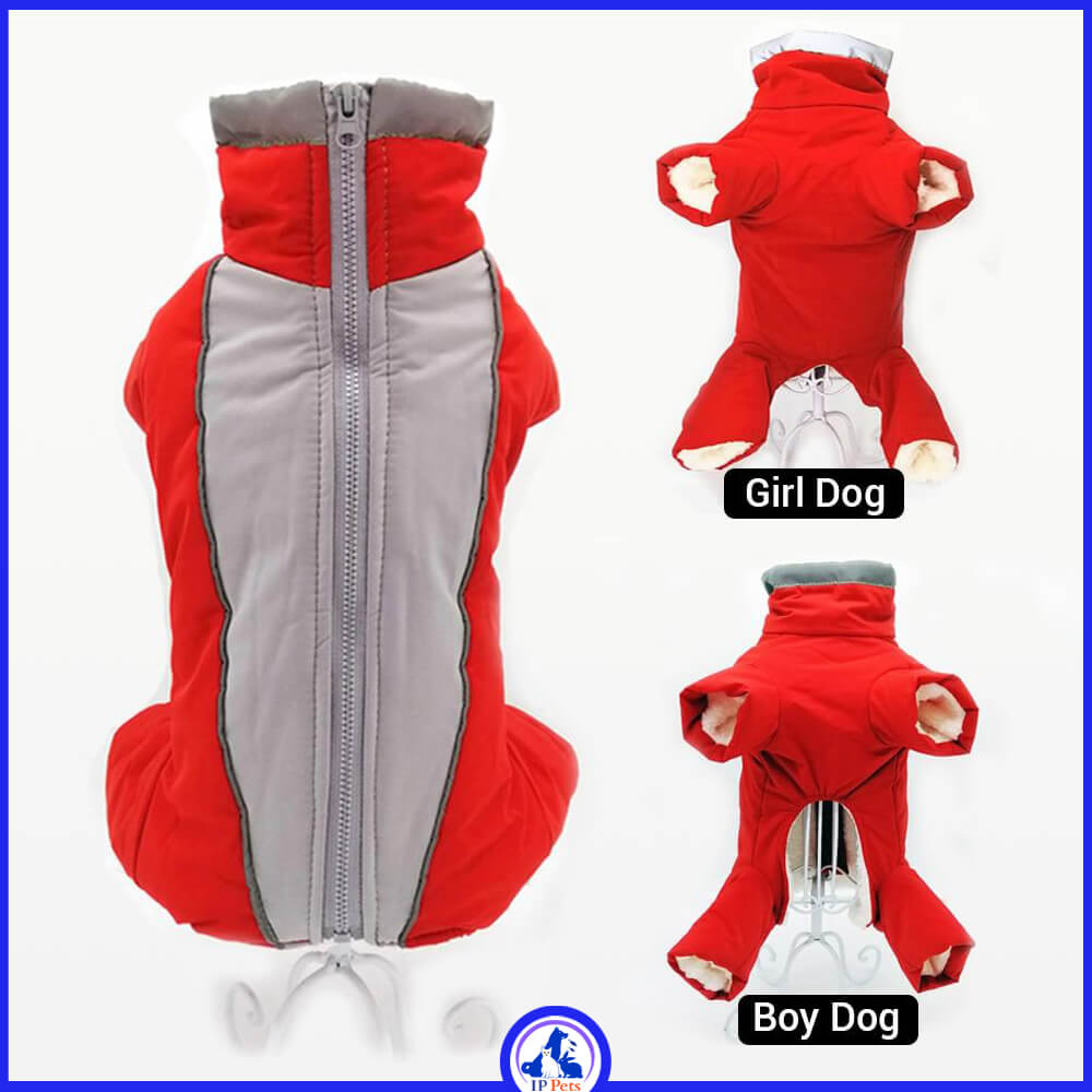 Overalls for dogs warm suit