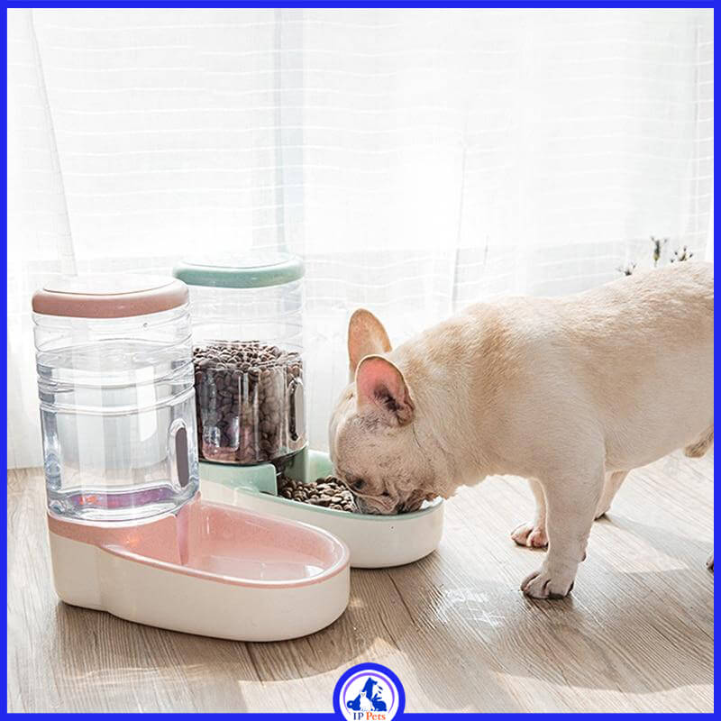 Pet Food and Water dispenser ippets