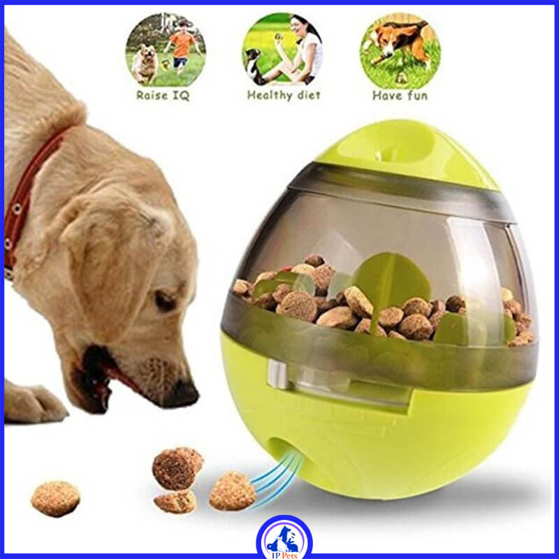 Ball game with food for dogs ippets