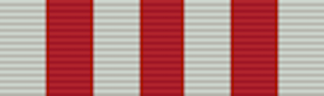 Distinguished Service Medal - Solomon Brothers Apparel