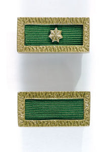 Unit Citation for Gallantry - Solomon Brothers Apparel